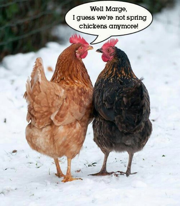 "*Let's hope we see many more winters And keep the ""spring"" in our steps.  We are two tough old birds!"