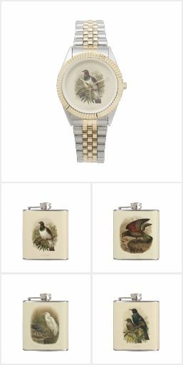 NZ Birds Jewellery and Gifts - A collection of watches and flasks which would make great gifts for special occasions like 21st birthdays etc.  They have beautiful vintage illustrations of NZ native birds by J.G. Keulemans from Walter Buller's A History of the Birds of New Zealand, first published in 1873.  Available internationally from southerlygale.com through the Zazzle print on demand marketplace.