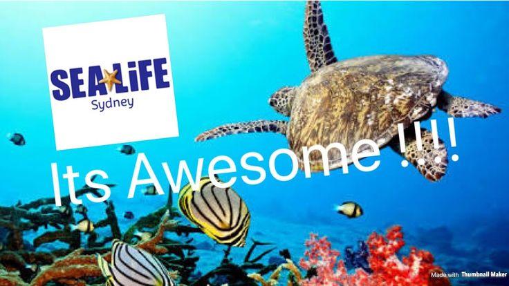 Sea Life Sydney Aquarium 2017 - YouTube