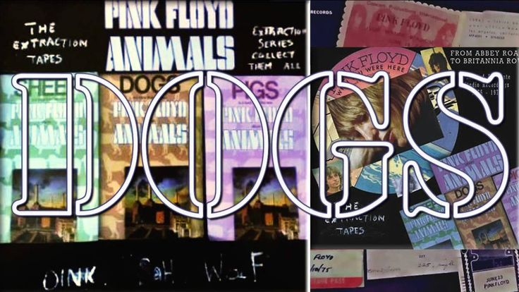 Pink Floyd - The Extraction Tapes - DOGS (1976) Studio