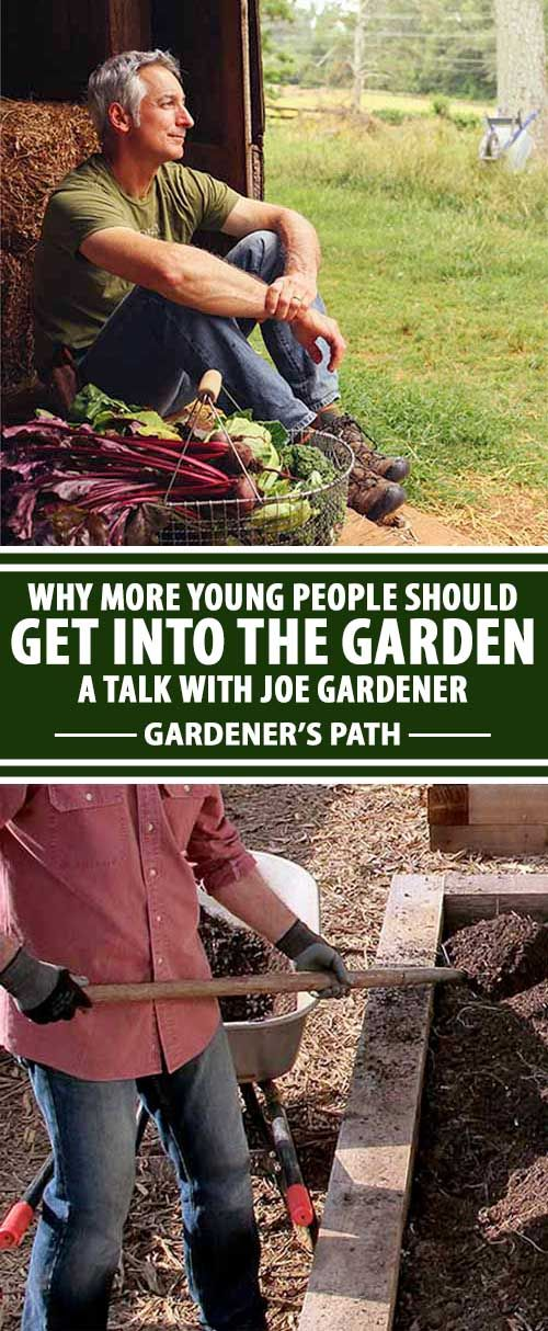 TV gardening personality Joe Lamp'l says modern edible gardening is becoming the wide availability of tools and products make modern gardening easier and more appealing to a larger variety of people around the country. Read our interview with the gregarious Joe Gardener on Gardener's Path now.