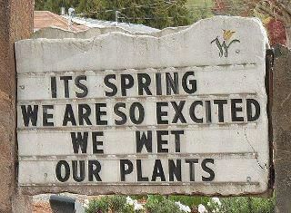 LOL: Shops Signs, Funny Signs, Quote, Giggl, Gardens Signs, Funny Stuff, Spring, Flowers Shops, Gardens Humor