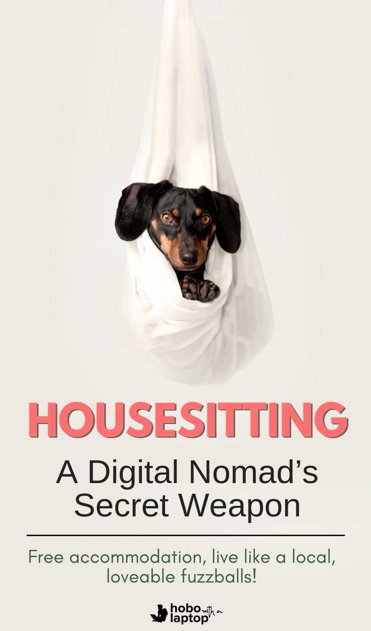 How To Become A House Sitter Where To Find Jobs House Sitting