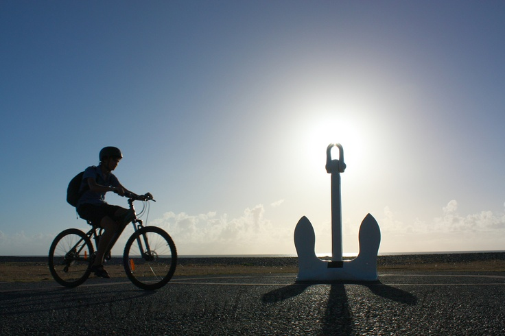Early morning cyclist along Napier' beach promenade ... With lots of bicycle paths it really is the green & healthy way to get places :)