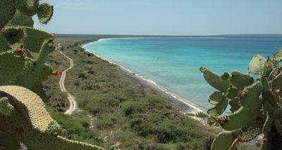 Anuncian construcción de un aeropuerto y hotel para Bahía de las Águilas SANTO DOMINGO. El Gobierno, junto a inversionistas extranjeros, anunció la construcción de tres mil habitaciones y un moderno aeropuerto internacional, como forma de desarrollar la Región Sur del país,