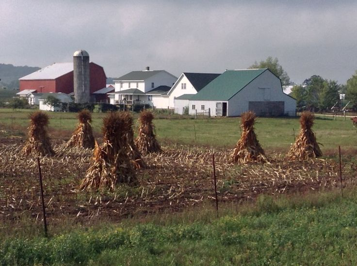 17 best images about amish a simple life on pinterest for Country farm simples