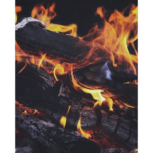Camping fire is the best kind of fire. Good night lovely humans, Maya loves you dearly.. www.travelwithmaya.com #travelwithmaya #stayandwander #roamtheplanet #fwolfdog #wolf #czechoslovakianwolfdog #camping #lifeofadventure #adventurethatislife #campingwithdogs