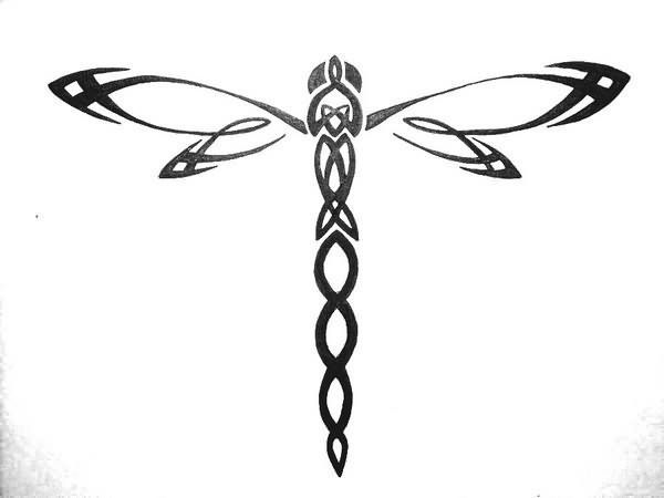 Celtic knot dragonfly. I've always wanted a dragonfly on the top of my right foot and I think this is the design I've decided on.: