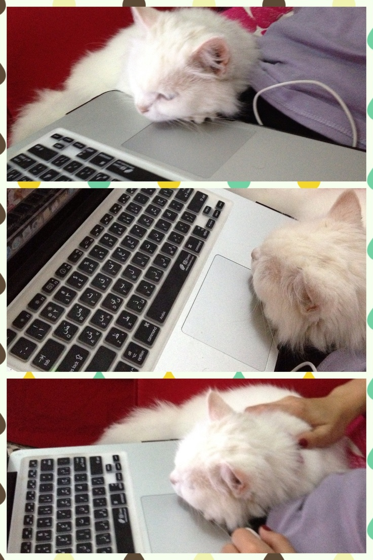 Lily's past time.. hehehe! :P