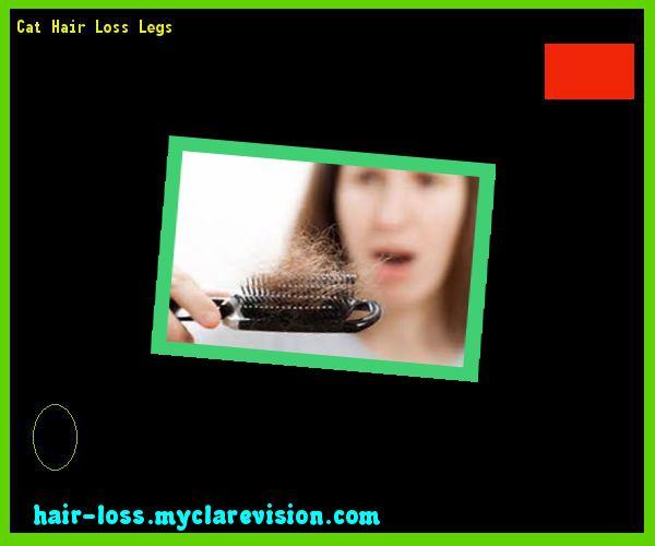 Cat Hair Loss Legs 232938 - Hair Loss Cure!