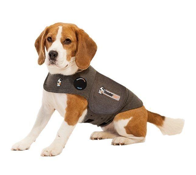 Details Das patentierte Thunder Angst-Shirt für Hunde gibt einen schonenden, stetigen Druck ab, der eine beruhigende Wirkung auf über 80% aller Hunde hat. Egal ob Trennung, 1. August-Lärm, Gewitter oder...