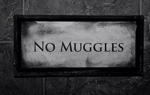 Se denomina Muggle al ser humano que no tiene ninguna habilidad mágica