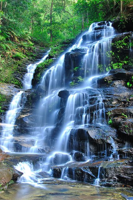 Sylvia Falls, Blue Mountains, Australia   RePinned by : www.powercouplelife.com