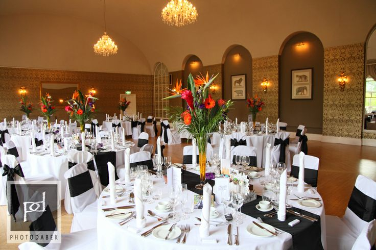 25 best the clifton pavilion at bristol zoo images on pinterest one of our favourite bristol wedding venues has to be the unique clifton pavilion at bristol zoo gardens solutioingenieria Gallery