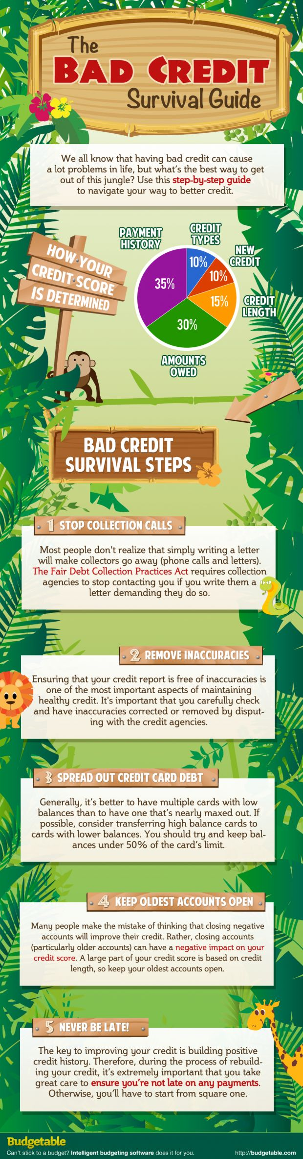 The Bad Credit Survival Guide