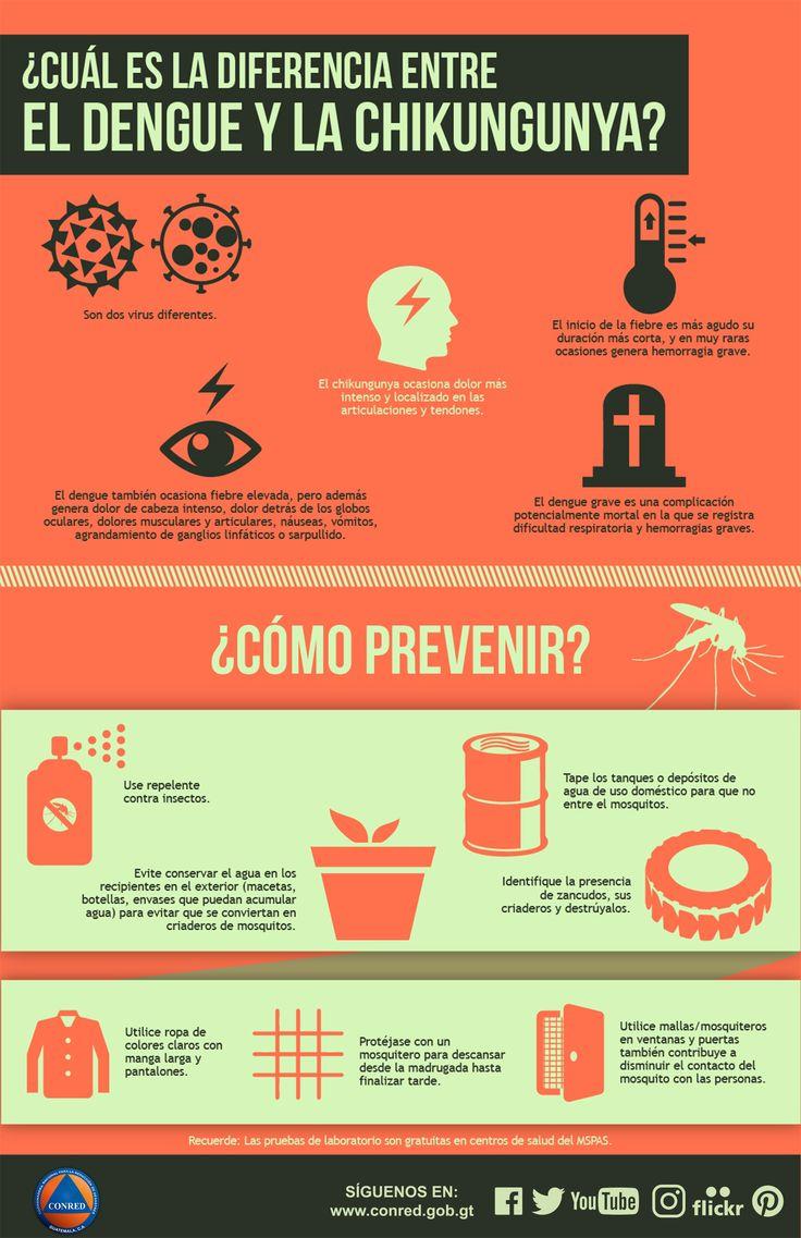 Conoce la diferencia entre el Dengue y la Chikungunya y ¿cómo prevenir?