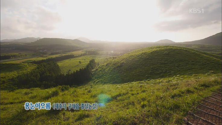 2014.07.25 [뉴스광장 영상] 용눈이 오름 / 권순두