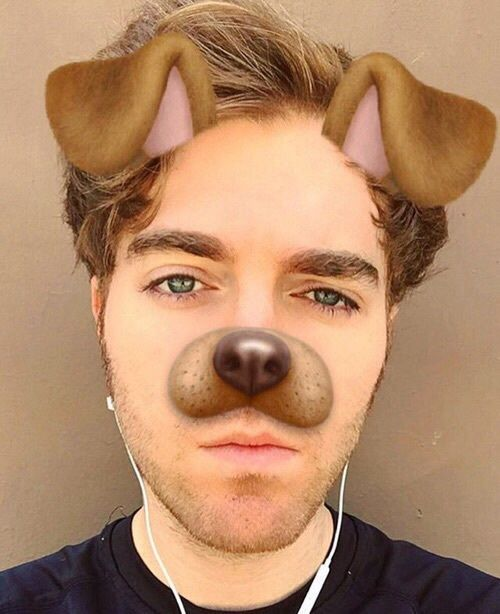Shane wants to be on a dan and Phil board so happy fucking birthday jk love you so much please be my friend even though ur 30