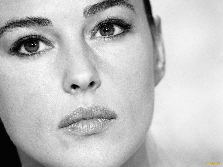 Monica Bellucci Twitter Backgrounds 1 HD Wallpapers