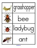 all the preschool printables you'll ever need: Insects Kindergarten, Preschool Printables, Insect Theme Preschool, Bug Insect Printables, Card, Printables You Ll, Insects For Kindergarten, Minibeast