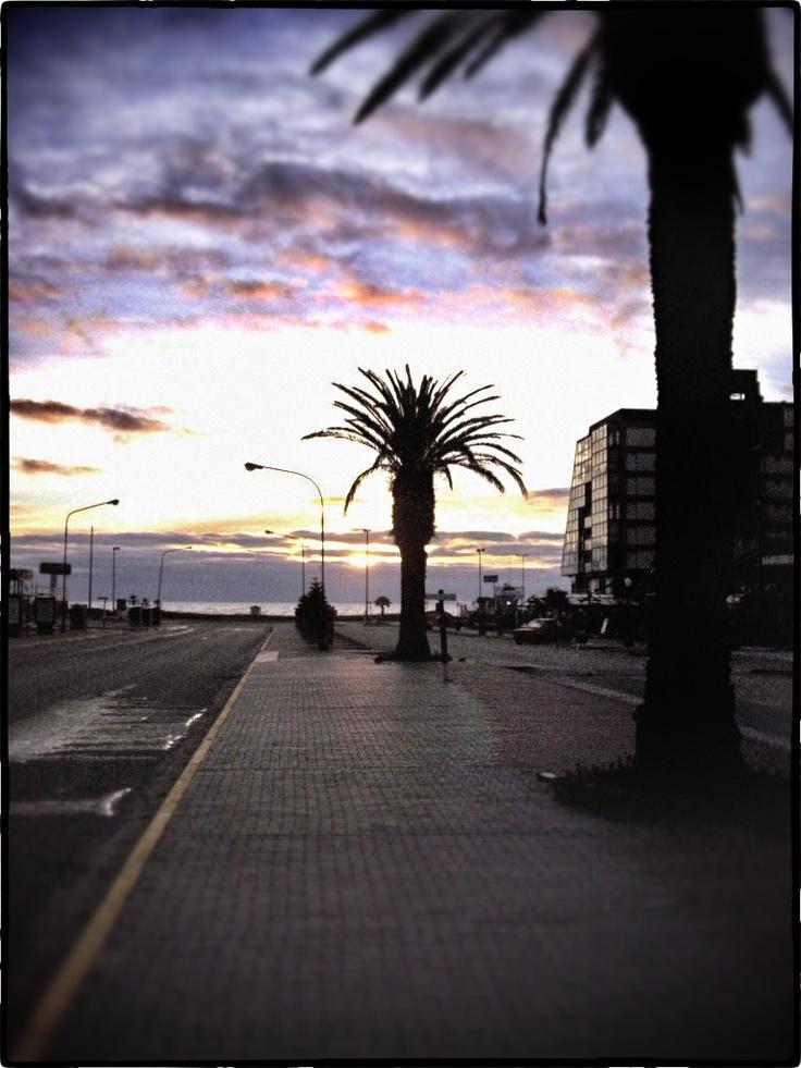 Pinamar, Argentina, amanecer, palmeras