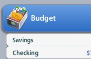Budgeting Software, appropriately entitled, You Need a Budget (YNAB).      This has been a game changer for our family.   This software makes sense, and has become one of the single greatest investments (at a whopping $60) we've made!
