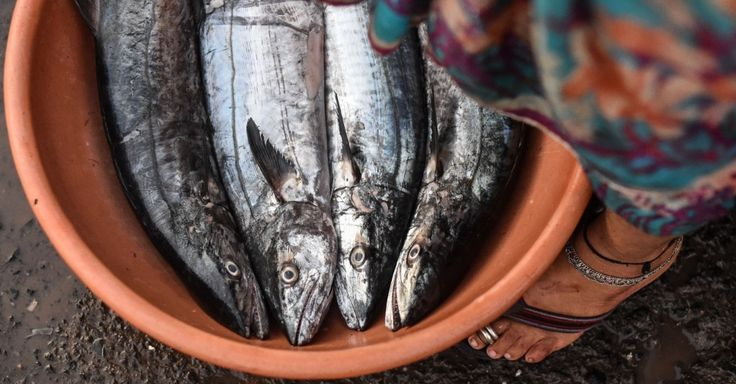 Mulher espera barcos de pesca descarregarem peixes, crustáceos e moluscos no Sassoon Doca, em Mumbai, na Índia