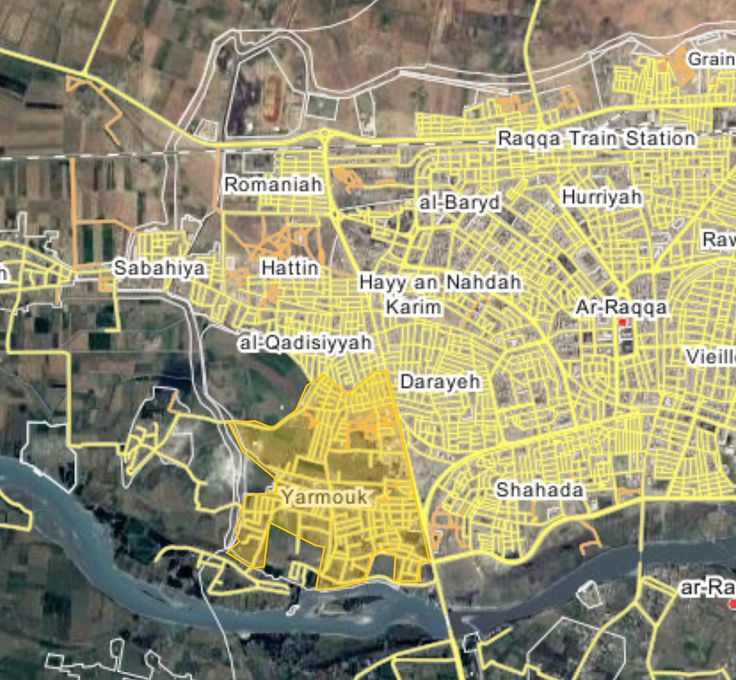 #Media #Oligarchs #Banks vs #union #occupy #BLM #SDF #Humanity  Fierce clashes continue in the Hattin and Yarmouk neighborhoods west of Raqqa. Dozens IS members were killed ANHA #Raqqa #SDF #YPG #YPJ #MMC   https://twitter.com/ClaudiaAlMina/status/878170239032188928