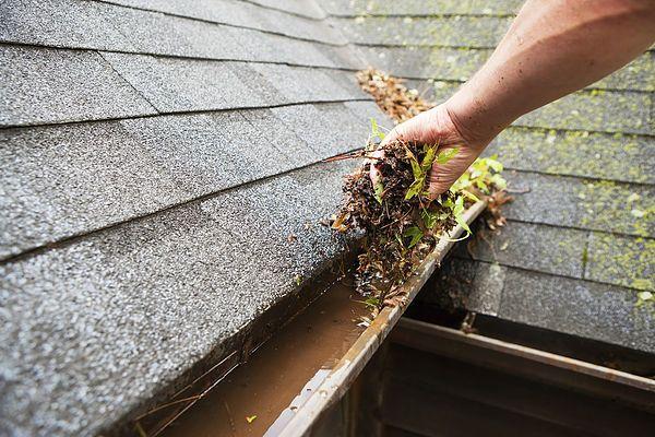 Gutter Cleaning Roofer in Dublin