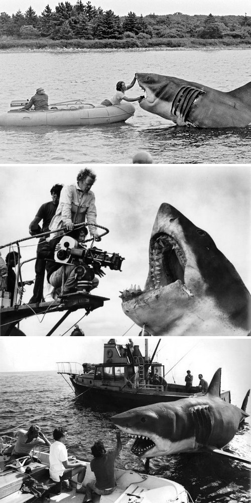 The prop-sharks, all nicknamed Bruce, on the set of Jaws (1975)