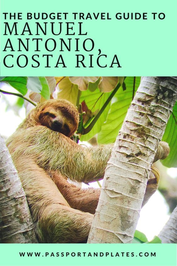 Planning a trip to Costa Rica? CLICK to read the travel guide to Manuel Antonio, Costa Rica. This West Coast city is not to be missed!   http://passportandplates.com