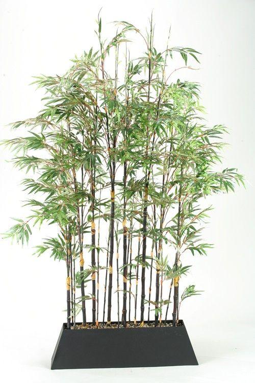 best 25 bamboo screening ideas on pinterest bamboo. Black Bedroom Furniture Sets. Home Design Ideas