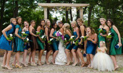 Pávaszínes koszorúslányok, Peacock bridesmaids
