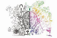 SERVIZIO DI NEUROPSICOLOGIA VALUTAZIONE NEUROPSICOLOGICA Obiettivo della valutazione neuropsicologica è quello di accertare l'efficienza cognitiva della personaattraverso un ventaglio di prove tese a indagare diversi domini cognitivi (memoria, attenzione,linguaggio, abilità visuo-spaziali, funzioni esecutive). Viene così tracciato un profilo che mette in luce non solo le difficoltà, ma anche le potenzialità della persona, al fine di scegliere il miglior inte...