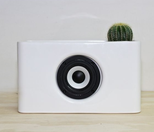 wireless speaker. (and a tiny cactus.)