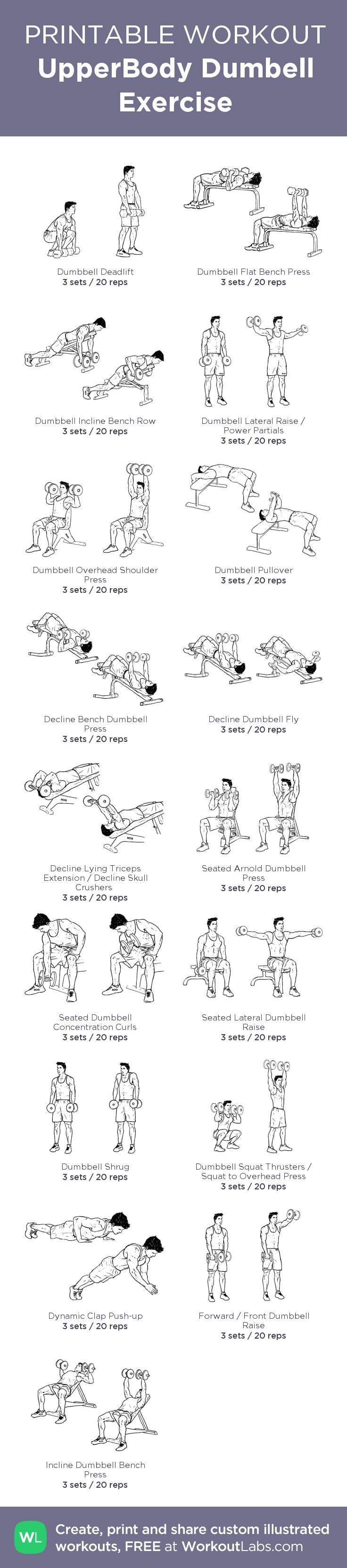 UpperBody Dumbell Exercise:Created at WorkoutLabs.com • Click through to customize and download as a FREE PDF! #customworkout