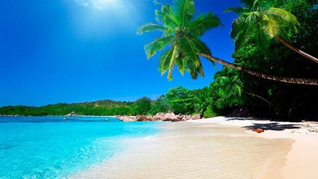 Bir Orta Amerika ülkesi olan Kosta Rika, zengin sahil şeritlerine ve muhteşem plajlara sahiptir. #Maximiles #tatil #gezilecekyerler #görülecekyerler #görülmesigerekenler #tarihiyerler #kültürelyerler #vizesiztatilrehberi #yolcululuk #seyahat #travel #gezi #turistikyerler #turizmmerkezi #turizm