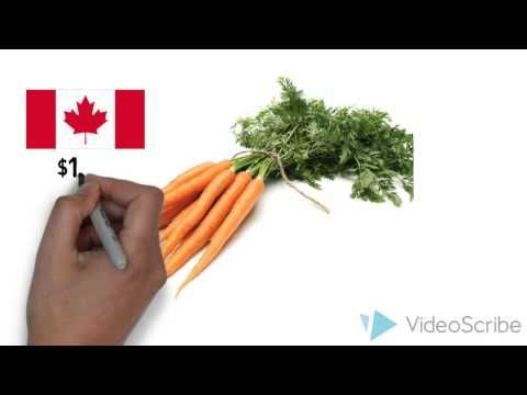 Food Prices in Nunavut: A Wicked Problem - YouTube