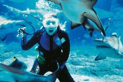 What are the world's top diving destinations? See the tips here: http://justbestylish.com/the-worlds-top-diving-destinations/