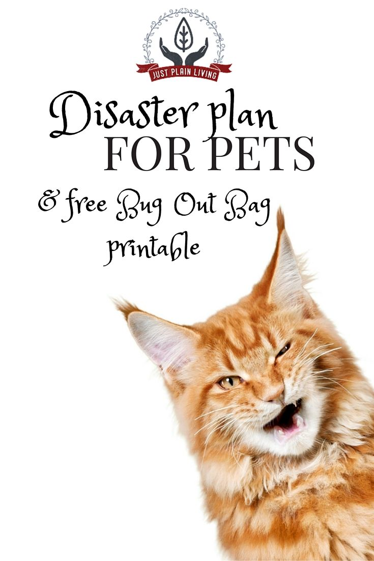 Keep your pets safe in an emergency. #Prepping is for animals, too! Free printable supply list.