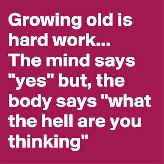 "Growing old is hard work...the mind days ""yes"" but the body says ""what the hell are you thinking""?"