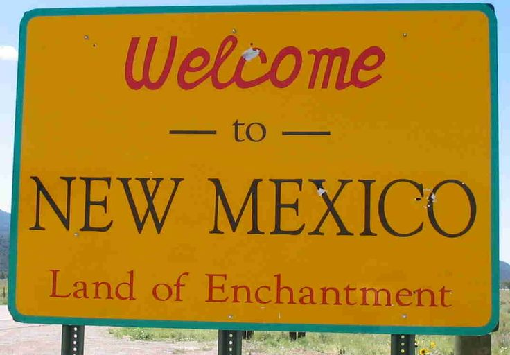 "Welcome to New Mexico. Land of Enchantment...and the setting for ""Frozen Cactus"" by Shawn Lee."