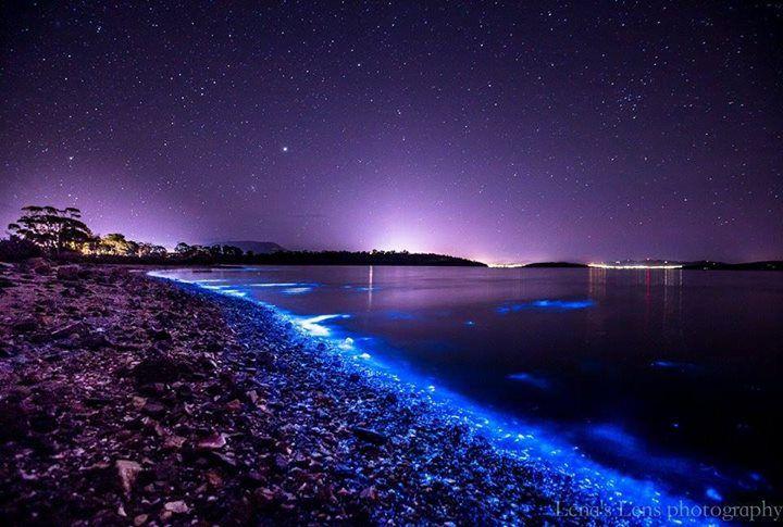 Bioluminescence captured from Tasmania.
