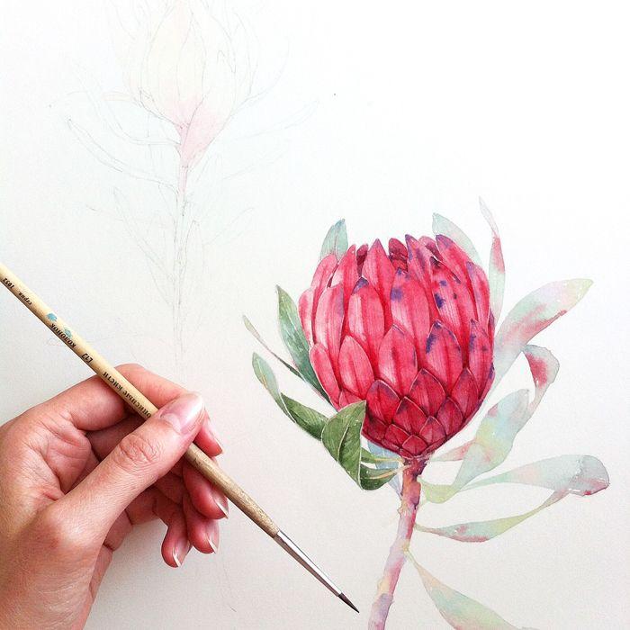 https://www.behance.net/gallery/29205459/Botanica
