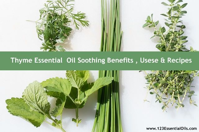 Thyme Essential Oil- Soothing Benefits, Uses & Recipes