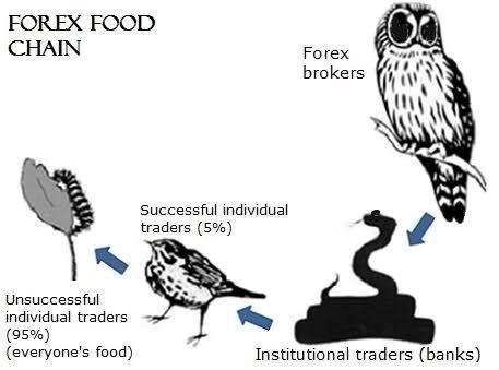 falcon forex advisors