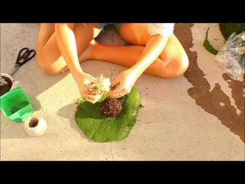 DIY hanging kokedama (Japanese Moss Balls) plant tutorial - YouTube