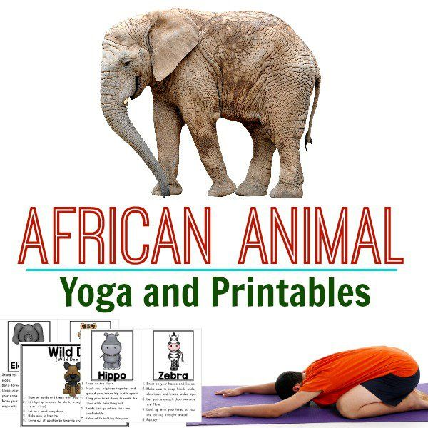African Animal Yoga Cover