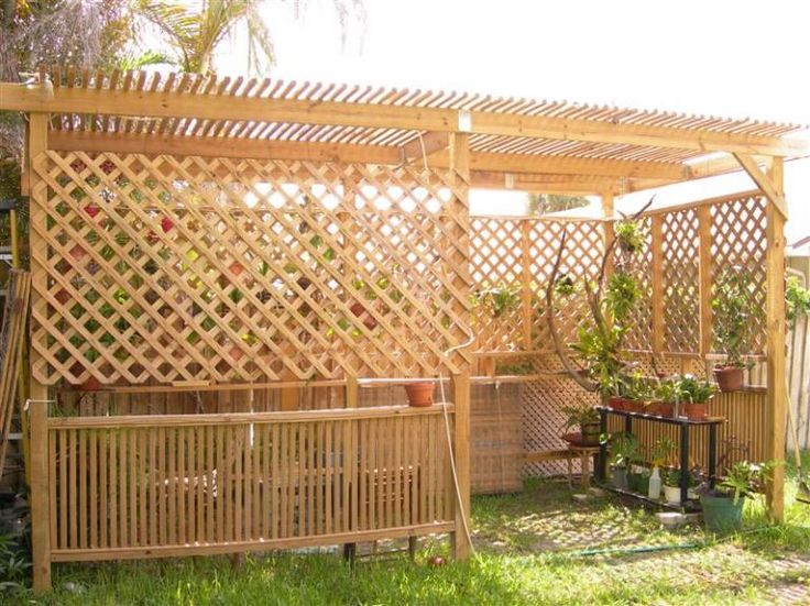 Shade for Orchids | Shade House Blooms-dscn4207-medium-.jpg