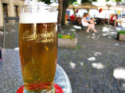 Budweiser - Budvar